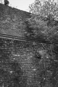 Muur van Mussert