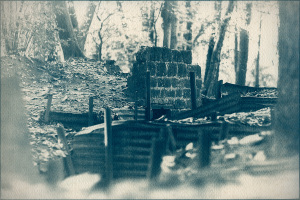 Cyanotypes: World War 1 Battlefields