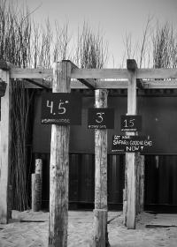 Zandvoort - 11 mei 2020