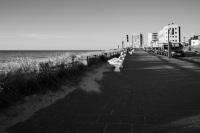 Zandvoort - 22 maart 2020